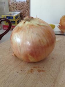 1lb onion
