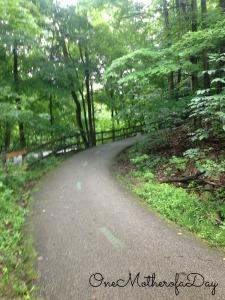 trail3picmokey