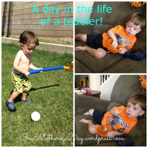 PicMonkey Collagedayinthelifeofatoddler