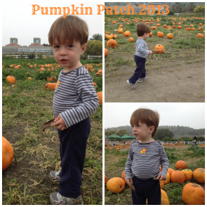 PicMonkey Collagepumpkinpatch2013