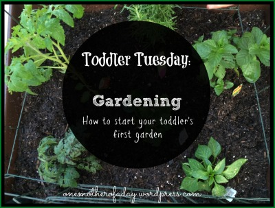 how to start your toddler's first garden