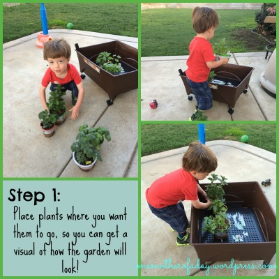 Step 1 in gardening with a toddler