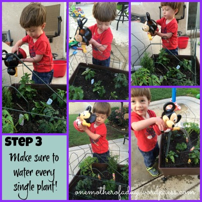 step 3 in gardening with a toddler